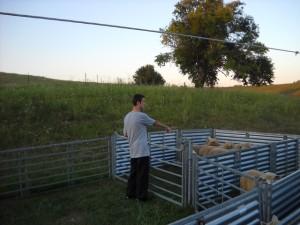Emil farm
